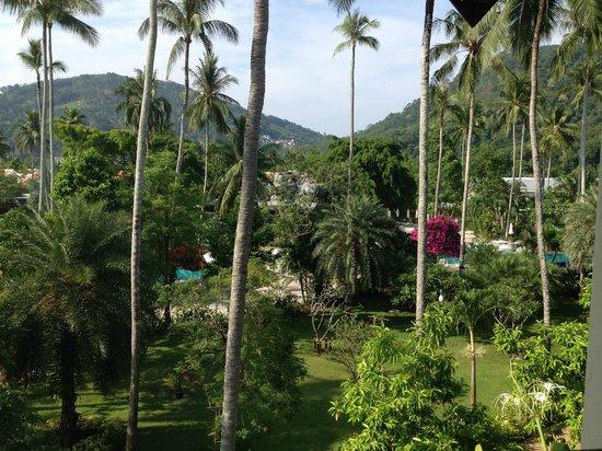 Duangjitt Resort & Spa : Vue depuis la chambre