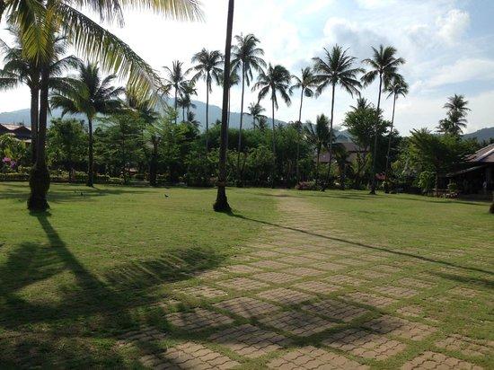 Duangjitt Resort & Spa : Jardins