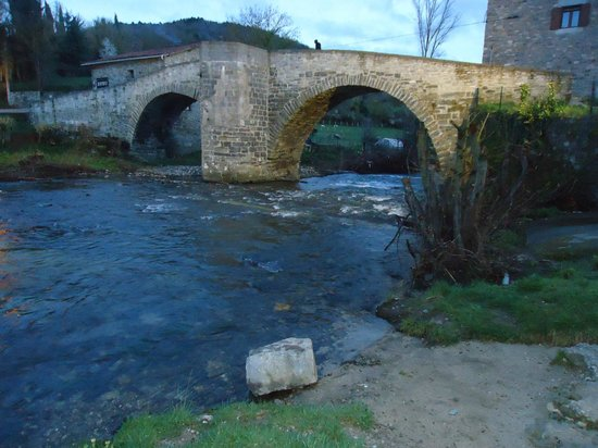 El Palo del Avellano Zubiri: Puente de Piedra