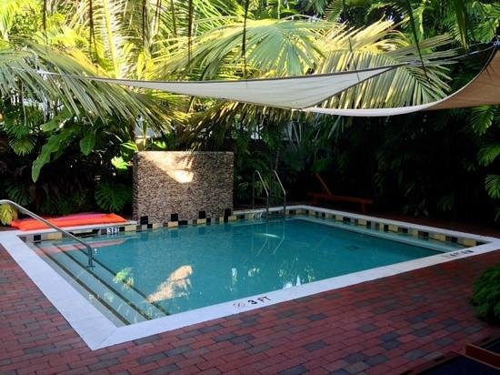 Travelers Palm Inn: Petite piscine bien agréable