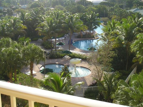 Vacation Village at Weston : View from 6th floor balcony
