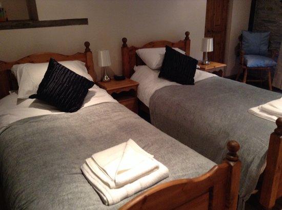 Seven Stars Inn: Twin Room