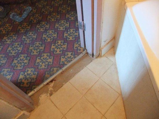 Roha Hotel : Level of maintenance
