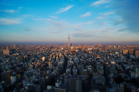 Mandarin Oriental, Tokyo: スカイツリーが見えます