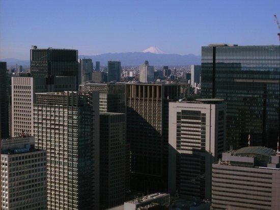 Mandarin Oriental, Tokyo: 天気が良いと富士山も見えます