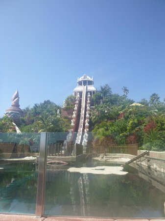 Siam Park: Tower of power