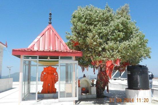 Kali Ka Tibba: Idol of Hanumanji and The Wish Tree