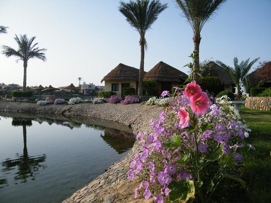 Panorama Bungalows Resort El Gouna: hotel grounds