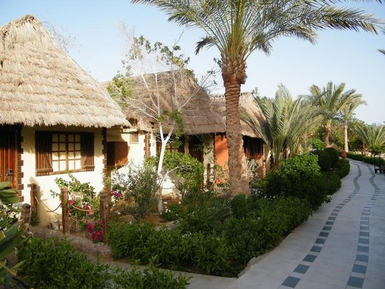 Panorama Bungalows Resort El Gouna: grounds