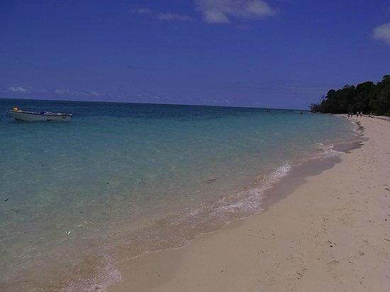 Green Island : グリーン島