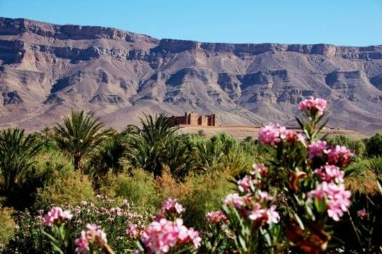 Desert Dream 4x4 Tours: Valle del Draa
