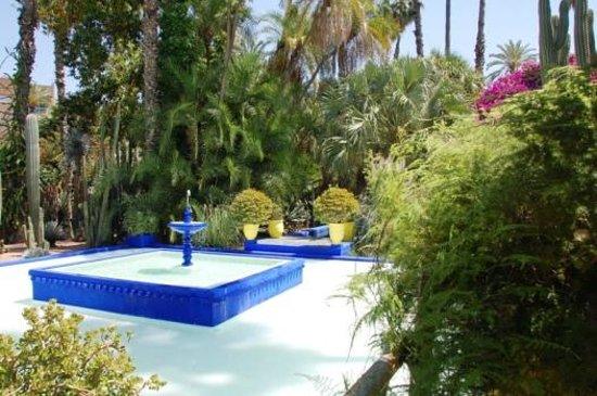 Desert Dream 4x4 Tours: Giardini Majorelle