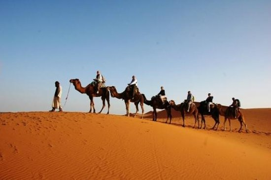 Desert Dream 4x4 Tours: Deserto