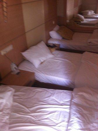 Ersan Resort & Spa: Chambre