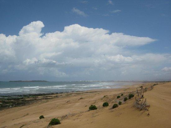 Zouina Cheval : Vue d'Essaouira du haut des dunes