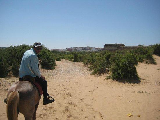 Zouina Cheval : Brahim et son palais