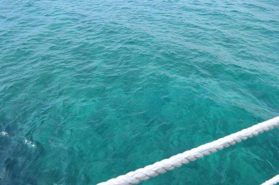 Kaya Artemis Resort and Casino: L'eau de la mer ;)