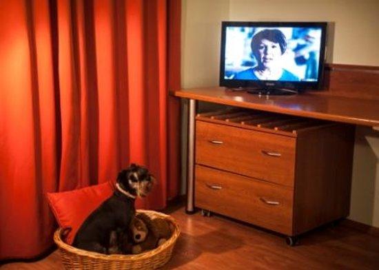 Garni Hotel/Pension Fan: pets allowed