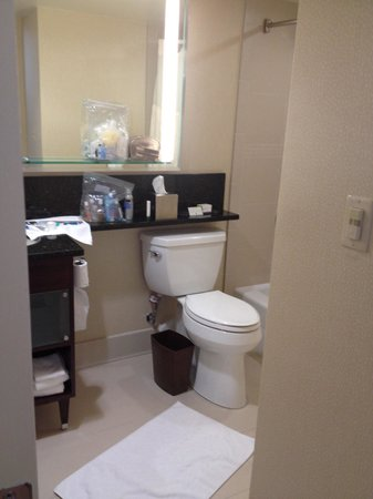 Doubletree by Hilton Hotel Denver : Spacious but not much room for toiletries
