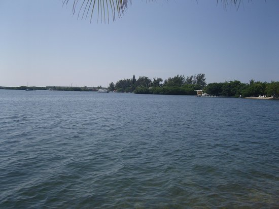 Boyd's Key West Campground: The view