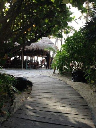 La Zebra Colibri Boutique Hotel : Entrance