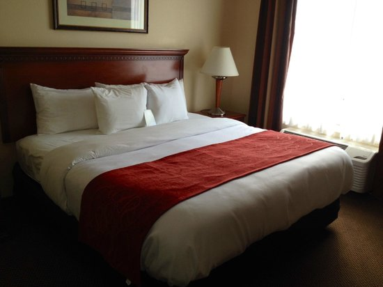 Comfort Suites Cincinnati Airport : New Bedding-King Bed Suite