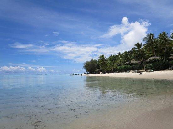 Pacific Resort Aitutaki : The Beach and Lagoon