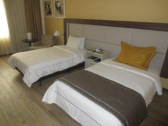 Hotel Transamerica Sao Paulo: La habitación # 254. Nada del otro mundo