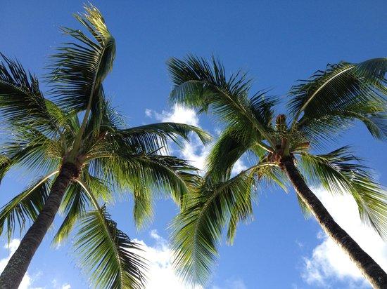 Mon Choisy Beach Resort : Allongé sur un transat de l'hôtel