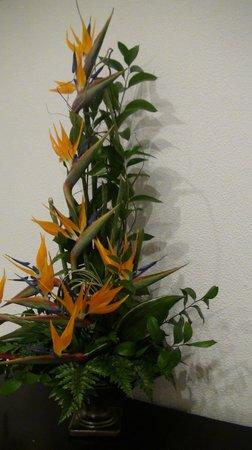 Dorisol Estrelicia: déco sur le thème des fleurs