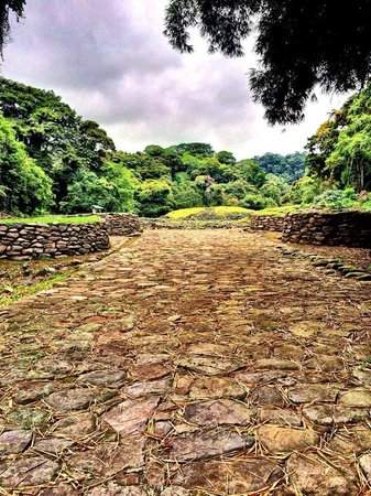 Guayabo National Park and Monument: The stone paved road to Guayabo
