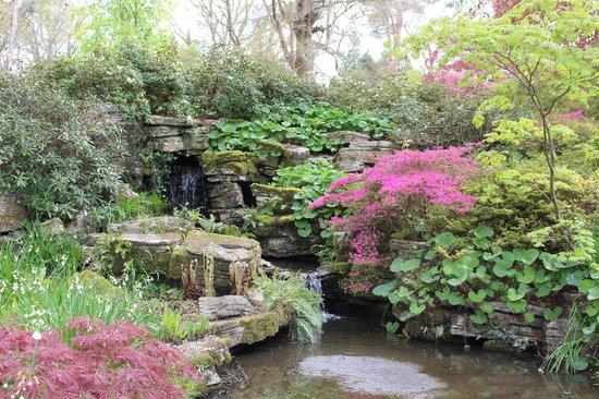 Exbury Gardens & Steam Railway: Beautiful pools and azaleas