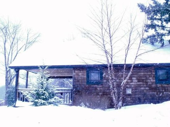Mountain Brook: Our cabin