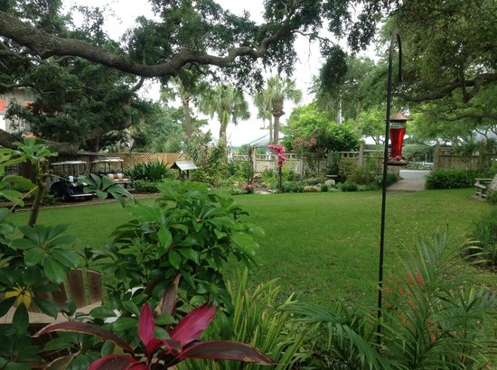 Cedar Key Bed and Breakfast: View of gardens