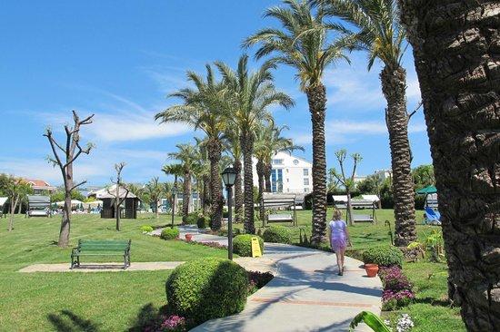 Alva Donna Beach Resort Comfort: hoteltuin