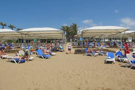 Alva Donna Beach Resort Comfort: zandstrand met ligstoelen en bar