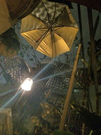 Nola Cafe: umbrellas on the roof top