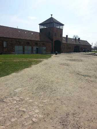 Dream Cab - Auschwitz Tours & Poland Transfers