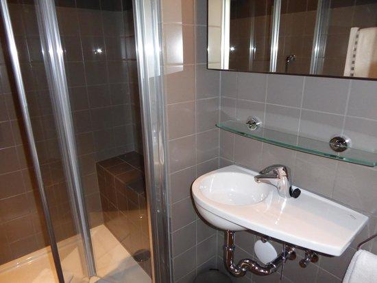 Hotel Leeuwenbrug: mini lavandino