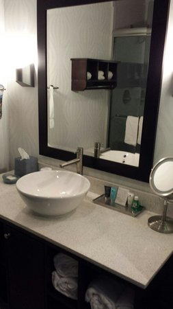 Crowne Plaza Fort Lauderdale Airport / Cruise Port: Bathroom