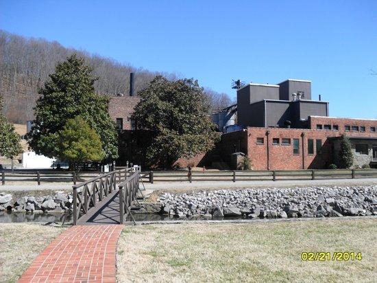 Veranda House: View across the creek