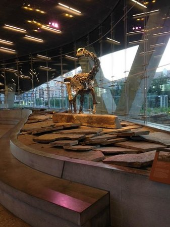 Perot Museum of Nature and Science : ancient meets modern!