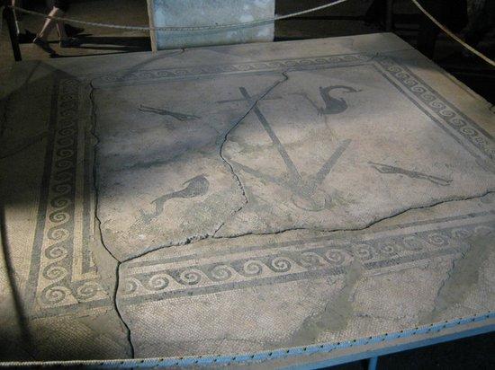 Herculaneum Ercolano : Recently excavated mosaic.