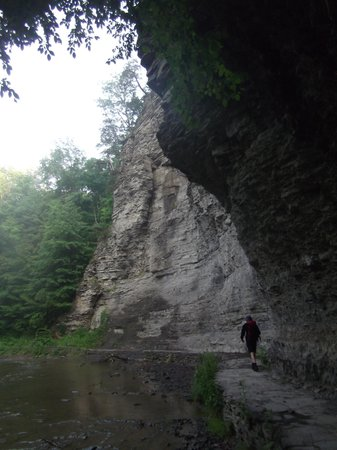 Robert Treman State Park: sheer rock walls by the walk