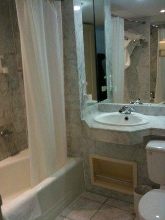 Ballsbridge Hotel : bagno