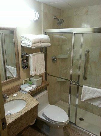 Hotel Central Fifth Avenue New York: Bathroom