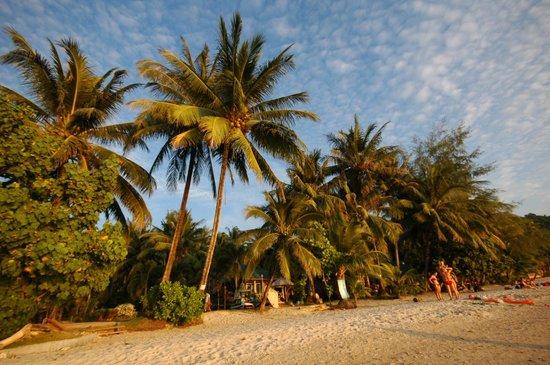 Kaibae Hut Resort: пляж