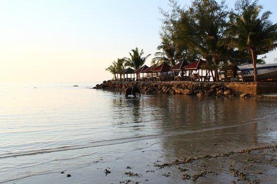 Kaibae Hut Resort: на пляже