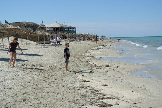 Caribbean World Djerba: plage