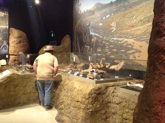 John Day Fossil Beds National Monument: Inside Visitor Center